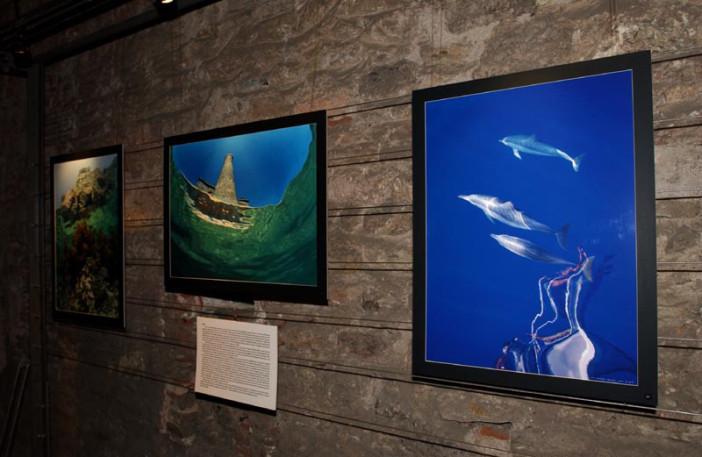 exhibition stars of underwater-004