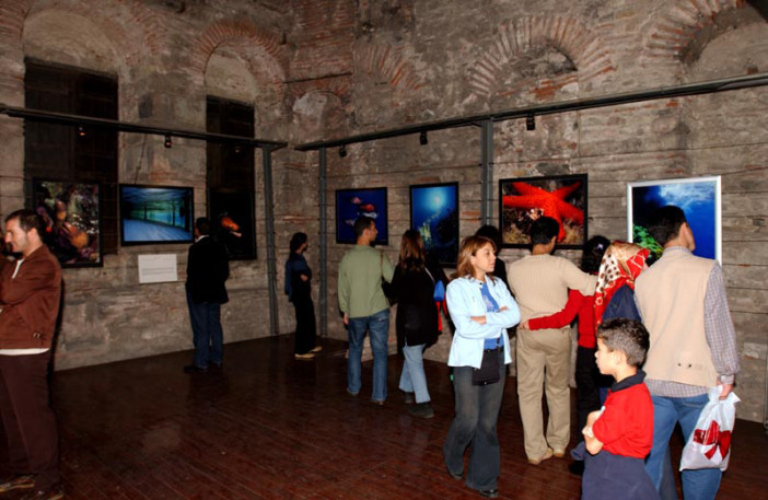 exhibition stars of underwater-010