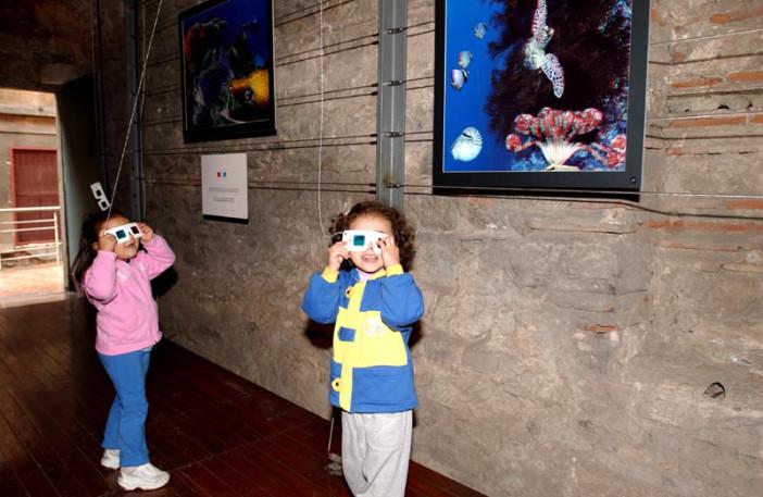 exhibition stars of underwater-008